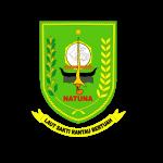 natuna logo